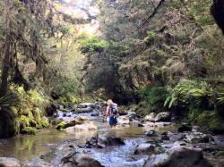 Stu in the creek